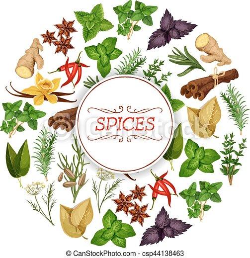 banner for seasoning herb or spice food spice food or clip art rh canstockphoto com Clove Spice Clip Art Herb Leaf