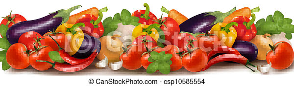 Banner made of fresh vegetables   - csp10585554