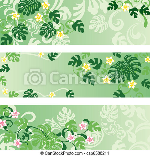 banner, satz, monstera - csp6588211