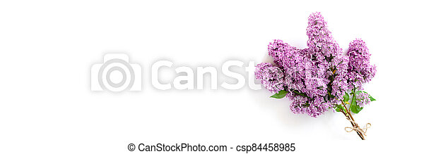 Banner with bouquet of lilac flowers on a white background. - csp84458985