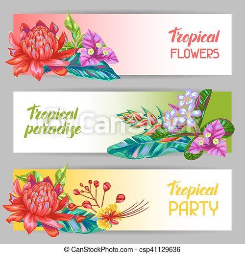 Banners with Thailand flowers. Tropical multicolor plants, leaves and buds - csp41129636