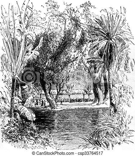 Banquet In The Botanical Garden Of Saint Pierre Martinique