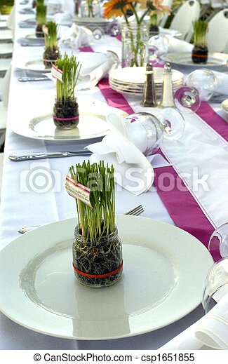 Banquet Table With Grass Centerpieces on Plates - csp1651855