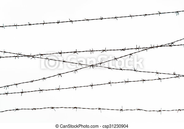 barb wire fence over gray sky - csp31230904
