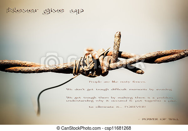 Barb wire - csp11681268