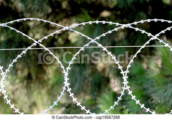 Barbed wire, razor fence - csp19567288