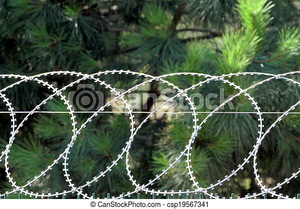 Barbed wire, razor fence - csp19567341