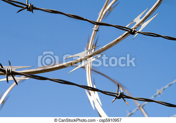 Barbed Wire Razor Sharp Security Fence Dangerous Two Types Of Barbed Wire On Blue Background Coiled Razor Wire And Canstock