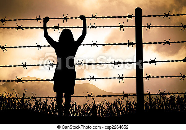 Barbed wire - csp2264652