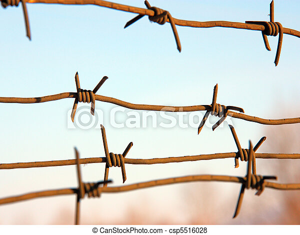 barbed wires against blue sky. - csp5516028