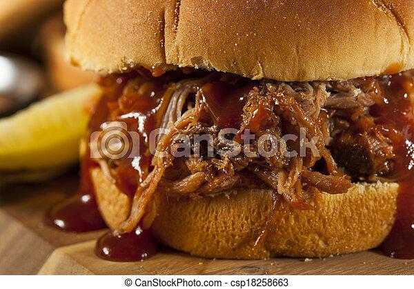 Barbeque Pulled Pork Sandwich - csp18258663
