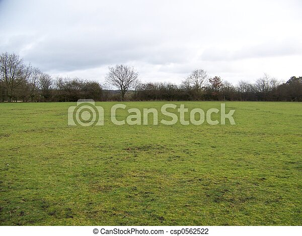 bare field - csp0562522