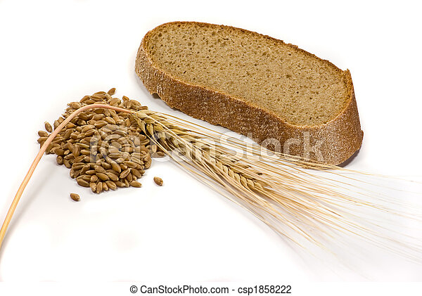Barley grains, ear and piece of bread - csp1858222