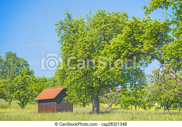 Barn in a meadow - csp28321348