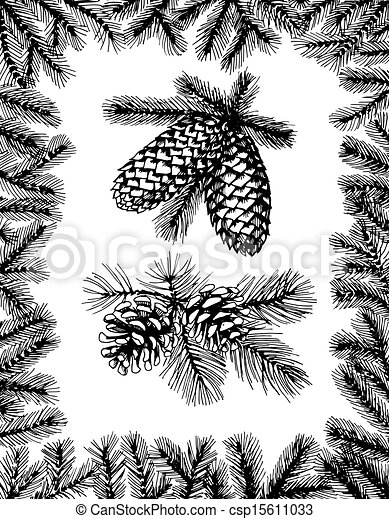 Barnches with pine cones and fir frame - csp15611033