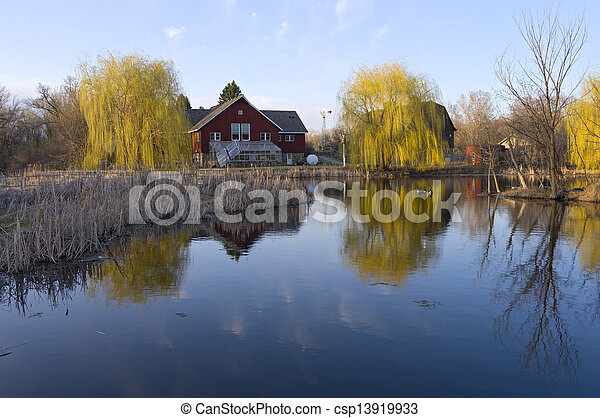Barns Reeds and Willows on Pond - csp13919933