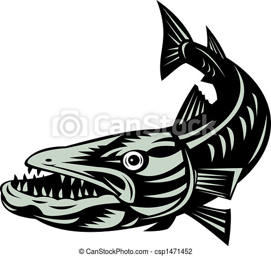 illustration of a barracuda fish clip art search illustration rh canstockphoto com barracuda clipart black and white