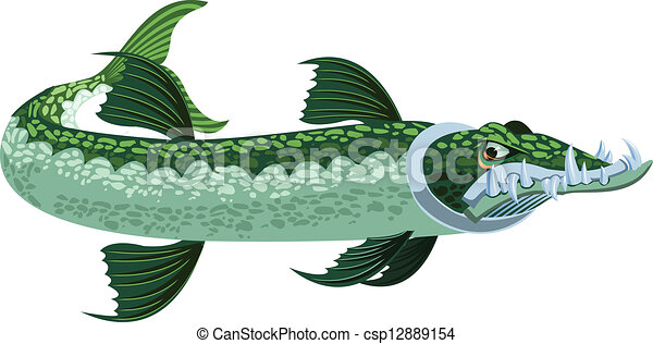 a cartoony stylized looking greenish barracuda with large clipart rh canstockphoto com Barracuda Drawing barracuda clipart black and white