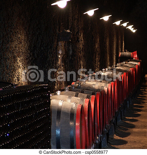Barrels in a wine-cellar - csp0558977