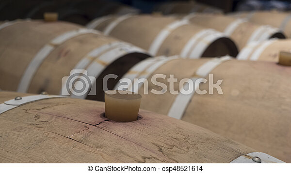 barrels in a wine cellar - csp48521614