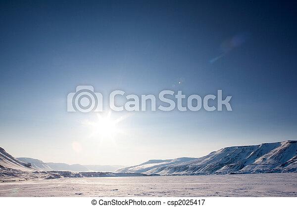 Barren Winter Landscape - csp2025417
