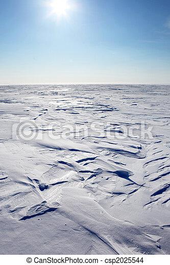Barren Winter Landscape - csp2025544