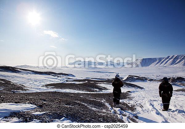 Barren Winter Landscape - csp2025459
