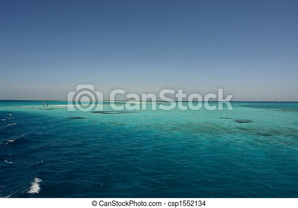Coral arrecife - csp1552134