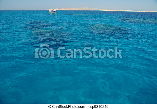 Coral arrecife - csp9310249