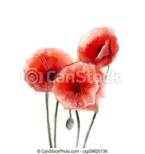 Barva Vodova Mak Kvetiny Malba Cerven Kvetiny Osamoceny Barva