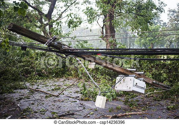bas, arbre, abîmer, vent - csp14236396