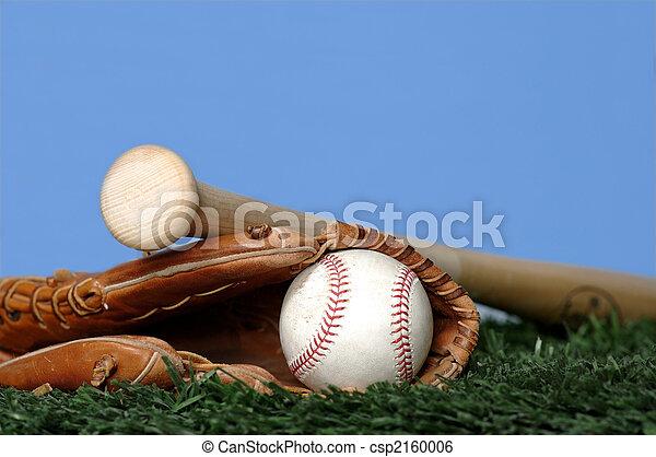 Baseball and Bat on grass - csp2160006