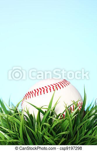 Baseball in grass - csp9197298