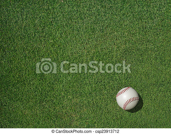 Baseball on Sports Turf Grass - csp23913712