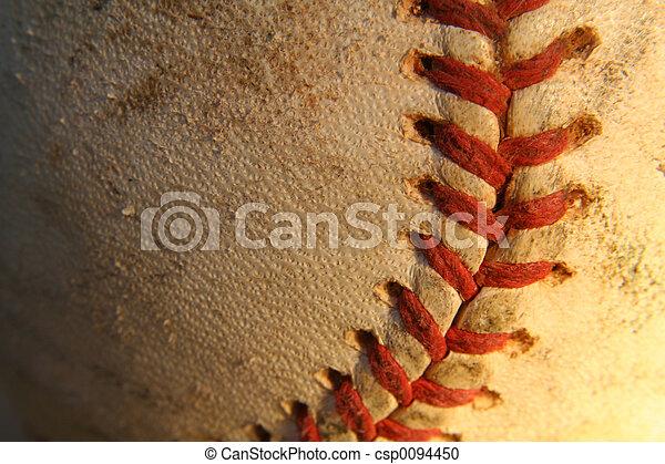 Baseball - csp0094450