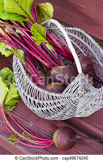 Basket of fresh harvested beetroots, beets with leaves - csp49674240