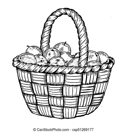 Basket with apples engraving vector illustration - csp51269177