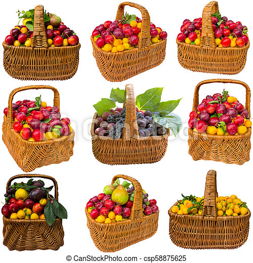 Basket with cherry plum and plums. - csp58875625