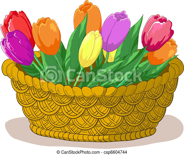 Basket with flowers tulips - csp6604744