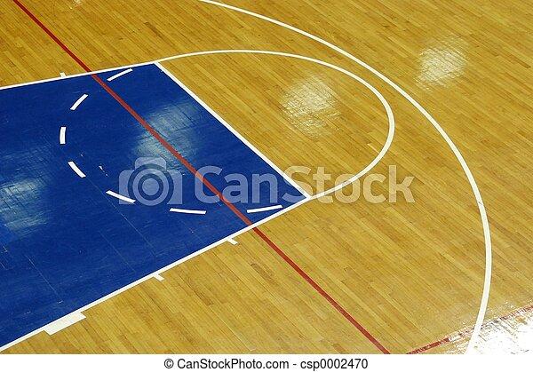 Basketball court - csp0002470