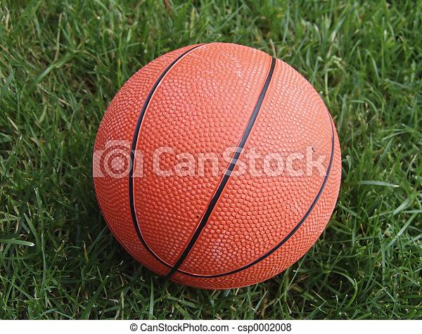 Basketball - csp0002008