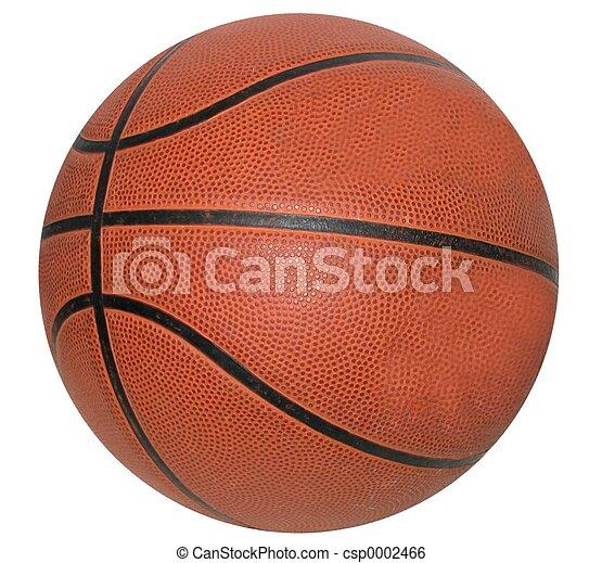 Basketball - csp0002466