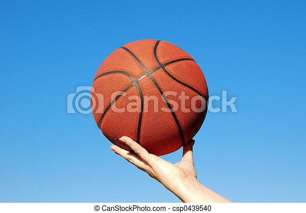 Basketball - csp0439540