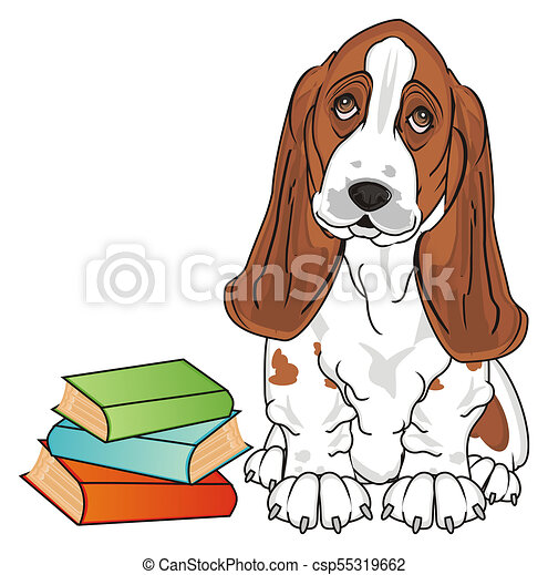 basset hound and books basset hound sit with many colored stock rh canstockphoto com  basset hound birthday clipart