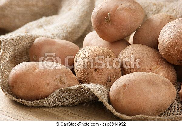 batatas, pilha - csp8814932