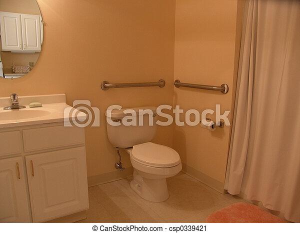 Bathroom with grab bars - csp0339421