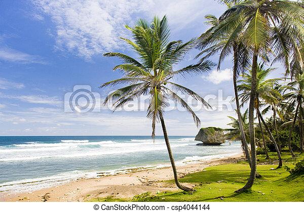 Bathsheba, Eastern coast of Barbados, Caribbean - csp4044144