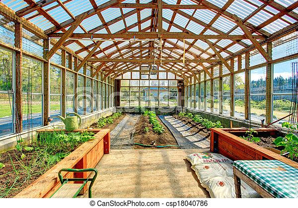 Bauernhof, groß, gewächshaus. Groß, kulturen, organische ...