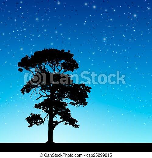 baum, himmelsgewölbe, nacht - csp25299215