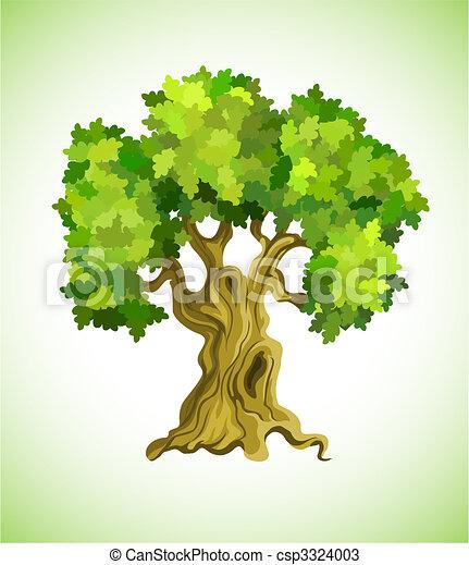 baum, symbol, ökologie, eiche, grün - csp3324003